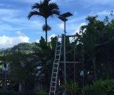 Illuminazione stradale solare Integrated del giardino del LED con il comitato solare registrabile