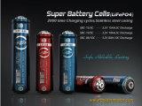 Nuova batteria della bicicletta della montagna del litio LiFePO4/batteria elettrica della bici