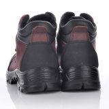 Los zapatos de seguridad de cuero de Nubuck del no metal con Agua-Resisten la fibra micro M-8361