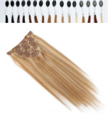 African American를 위한 Hair Extensions에 있는 Remy Straight Hair Clip