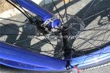 LCD Snow Cruiser E Bike mit Bafang 8 Fun Motor (RSEB-505)