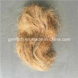 Fibra curta e macia do cânhamo/fibra da juta do comprimento 2-20cm