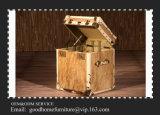 Изготовленный на заказ коробки хранения для хобота с высоким качеством