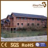 Wasserdichte WPC Außenwand-Umhüllung des China-Hersteller-