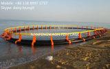 Jaula neta de los pescados de la piscicultura