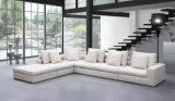 L moderno novo sofá da tela da forma, biblioteca de madeira (HC520)