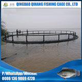 Vida útil longa Salmon Fish Farming Cages
