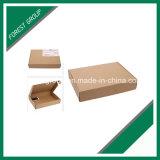 Farben-Papierverschiffen-Kasten für Klagen (FP0200053)