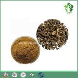 Heißes verkaufenauszug-10:1-20:1 der qualitäts-5% Saikosaponins natürliches Bupleurum mit bestem Preis