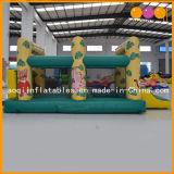Moonwalk gonfiabile della tigre con il raggruppamento gonfiabile della sfera (AQ401)