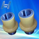 Accouplement flexible pour engrenage de tambour pour transmission