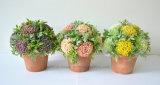Medios bonsais de la bola del crisantemo artificial casero de la decoración