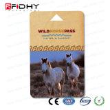안전 RFID 지능적인 MIFARE DESFire EV2 4K 카드
