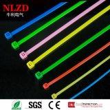 Laços de cabo de nylon colorido (aceite embalagem OEM)