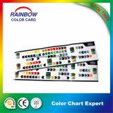 Высокое качество подгоняло сложенную карточку цвета печатной краски