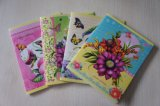 Wholesale Custom Office Supply Diary Notebook Printing