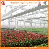 Сад/быть фермером парник листа PC тоннеля для растущий овоща/цветка
