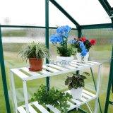 別荘の裏庭のためのDIYの温室