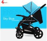 China-Baby-Spaziergänger-Fabrik-heiße Verkaufs-BabyPrams