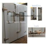camminata dell'isolamento dell'unità di elaborazione di 100mm nella cella frigorifera più fredda per la verdura