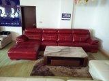 sofá 3+1+Chaise de couro
