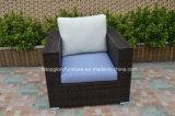 Sofá moderno del mimbre / de la rota de los muebles del jardín (TG-7001)