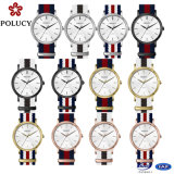 Moda Multi Color Nylon Strap Watch para Lady