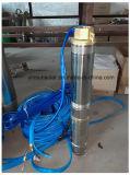 pompe 11kw solaire automatique pour l'agriculture et le pâturage Irragation