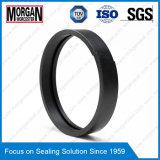 De Ring van de Gids van de Zuiger van het Profiel PTFE/Teflon/PA/POM van FA/de Ring van de Slijtage