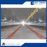 La avicultura automatizada prefabricada vertió/vertiente de /Pig de la casa de pollo