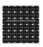 el panel solar del módulo solar 45W para el sistema del picovoltio