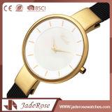 合金の箱が付いているハイエンドステンレス鋼の水晶腕時計