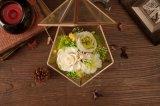 Цветки Ivenran свежие для коробки настоящего момента дня Valentine