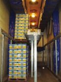 冷蔵室の低温貯蔵のスリラー/歩行を熟させているバナナ