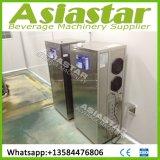 Automatisches Edelstahl RO-Wasser-Filter-Pflanzenbehandlung-System