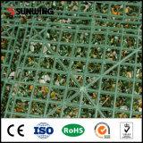Cerca plástica artificial al aire libre del recubrimiento de paredes del precio bajo
