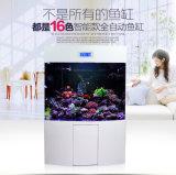Neues LED-helles großes Aquarium-Fisch-Becken