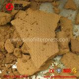 Filtre-presse brut d'huile de cuisine de fer de moulage de prix bas de qualité à vendre