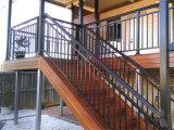 低価格のカスタマイズされた粉上塗を施してある階段塀
