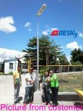Réverbère solaire de la garantie DEL de 3 ans pour le grand dos de jardin avec du ce RoHS