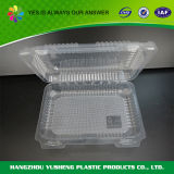 Recipiente de alimento plástico desobstruído BPA-Livre