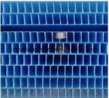 tarjeta hueco Correx Coroplast Corflute de los PP del espesor de 10m m