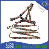 Fábrica de fornecimento personalizado retrátil colar de nylon colorido e coleira