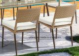 muebles al aire libre 2017new que cenan la silla de jardín de la silla del restaurante de la silla usando para la cara del hotel y de la piscina