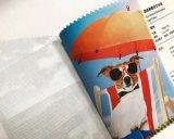 Eco zahlungsfähiges Digital Drucken-Kunst-Segeltuch-Drucken für im Freien