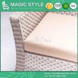 جديدة تصميم [ويكر] أريكة محدّد [رتّن] أريكة مع وسادة (أسلوب سحريّة)