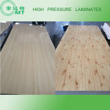 Het Laminaat van de hoge druk/Kabinet Kicten (HPL)