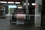 Troqueladora plana material de cuero plástica del PVC Hoting de los PP del PE