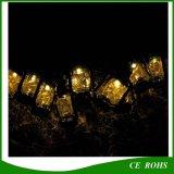 De zonne Zwarte Kleine Lichten van het Koord van het Paard 10PCS voor de Vakantie van Kerstmis