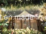 La tienda más nueva al aire libre del safari del lujo que acampa para la venta